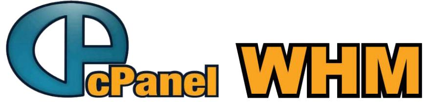 آموزش کانفیگ DNS اختصاصی در cPanel-WHM